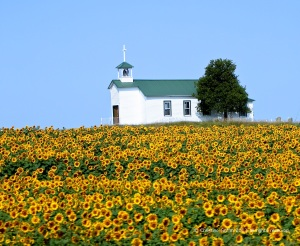Church-with-sunflowers
